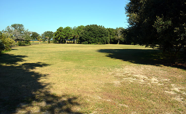 lots of grass at Brittlebank park, Charleston SC