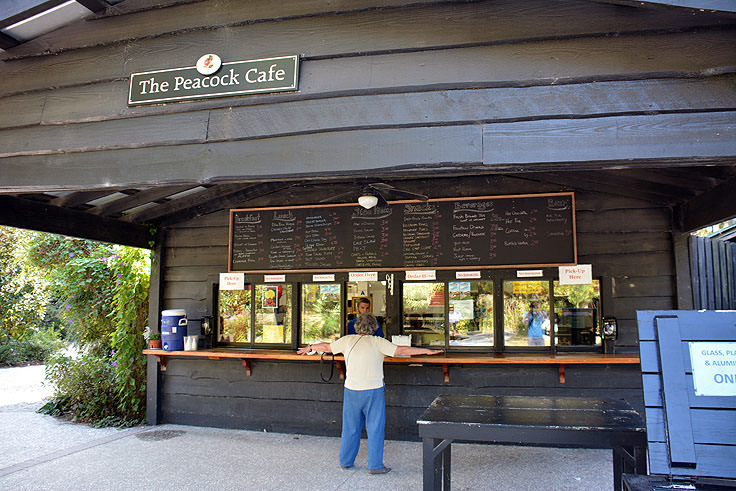 The Peacock cafe at Magnolia Plantation in Charleston, SC