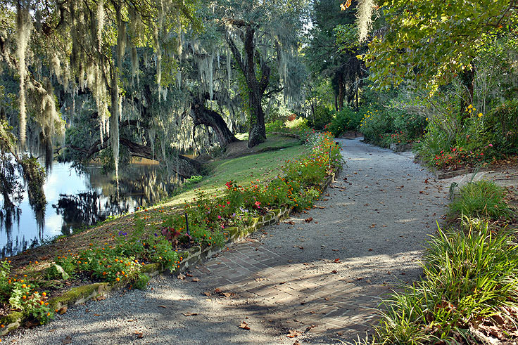A garden path at Magnolia Plantation in Charleston, SC
