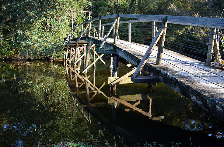 Footbridge in Middleton Place Plantation in Charleston, SC