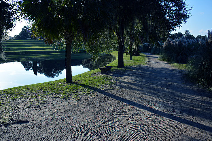 A walking path at Middleton Place Plantation in Charleston, SC
