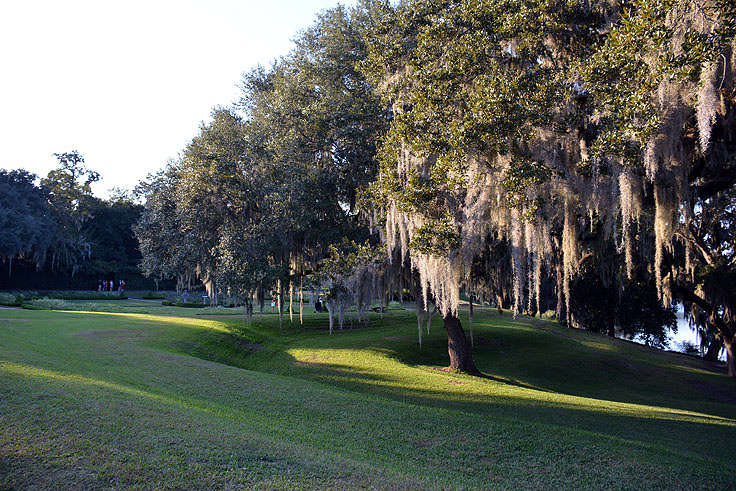 The grounds of Middleton Place Plantation in Charleston, SC