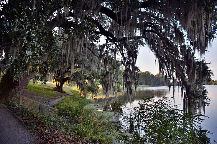 Waterside walking path at Middleton Place Plantation in Charleston, SC