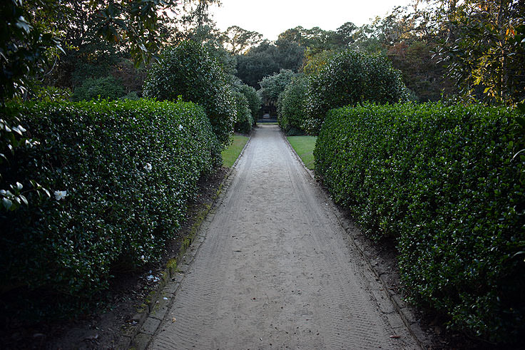 Formal gardens at Middleton Place Plantation in Charleston, SC