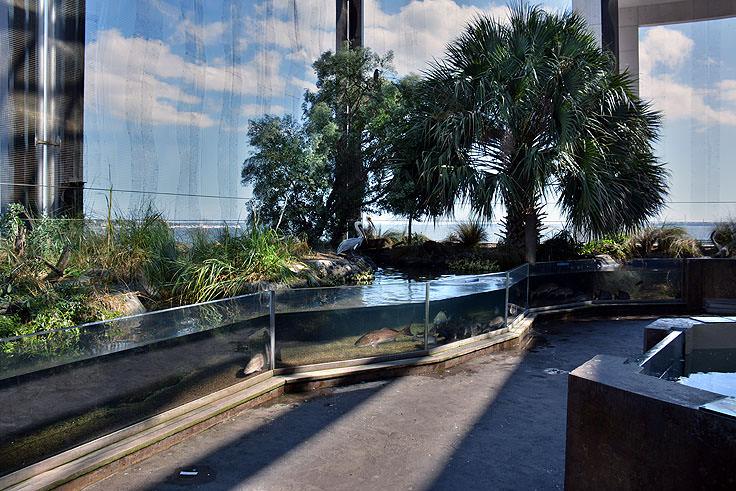 South Carolina Aquarium Charleston